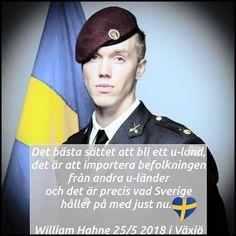 101 popularaste svenskarna