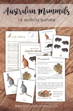 This 120 page bundle was created to complement your study of Australia and the animals unique to the land down under with your 3-9 year old child(ren). Some activities will be best for younger children while others have been created for older children to allow this bundle to grow with your child, or to work for children of different ages. The bundle contains 16 interactive activities that your little sparks will surely enjoy learning with. Montessori Homeschool, Montessori Toddler, Interactive Activities, Math Activities, Montessori Materials, Preschool Math, Early Education, Writing Practice, Vintage Artwork