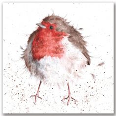 The Jolly Robin The Country Set Collection by Wrendale Designs Watercolor Bird, Watercolor Animals, Watercolor Paintings, Watercolours, Japan Illustration, Animal Drawings, Art Drawings, Art Aquarelle, Wrendale Designs