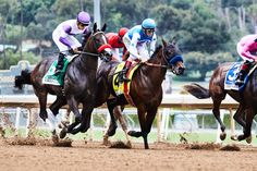 The Super-Optimized Dirt That Helps Keep Racehorses Safe Santa Anita Park, Derby Horse, Faster Horses, Racing Events, Sporting Live, Fox Sports, Thoroughbred, Horse Racing, Equestrian