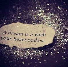 """A dream is a wish, your heart makes..."