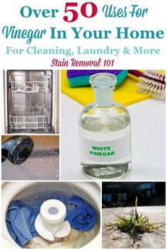 Over 50 uses for vinegar in your home, for cleaning, laundry and more {on Stain Removal 101} #UsesForVinegar #VinegarUses #UsesOfVinegar Deep Cleaning Tips, House Cleaning Tips, Spring Cleaning, Green Cleaning, Cleaning Products, Bathroom Cleaning Hacks, Toilet Cleaning, All You Need Is, Homemade Toilet Cleaner