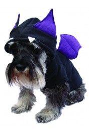 #DisfracesParaPerros Disfraz de Murcielago para Perro