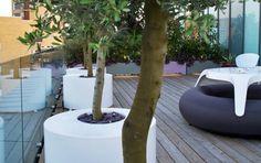 Hackney with Olive trees, LED and seating Rooftop Design, Terrace Design, Garden Design, Small Courtyard Gardens, Small Courtyards, Rooftop Gardens, Rooftop Terrace, Olivier En Pot, Pots