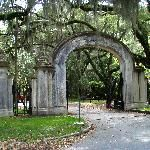 Wormsloe plantation Savannah, GA. Site of my 4th of july wedding