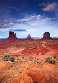 The Mittens, Monument Valley, Arizona/Utah; photo by Michael Greene Finally going to see these beauties! Arches Nationalpark, Yellowstone Nationalpark, Beautiful World, Beautiful Places, Monument Valley Utah, Landscape Photography, Nature Photography, Places To Travel, Places To Visit