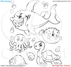 Print Coloring Page And Book Ocean Seahorse3 Animals