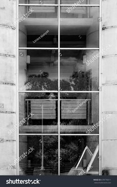 Windows with reflection of trees and clouds
