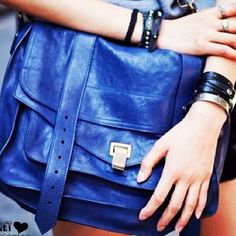 Add a blue bag in my closet