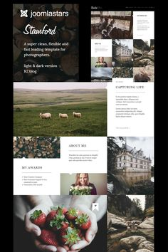 Introduction:Stamford is a responsive joomla website template for photographers. Stamford uses for enhanced site speed and stability, is optimized for Responsive Slider, Seo Plugin, Web Design Software, Photography Templates, Joomla Templates, Stamford, Create Website, Photography Portfolio, Designs To Draw