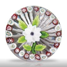 TheGlassGallery.com - - - Auction Site