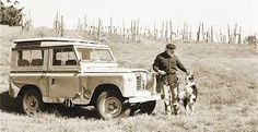 collie land rover - Google Search