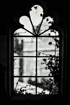 This kind of farmhouse windows is honestly a formidable design principle. Window Photography, Gray Aesthetic, Window View, Foto Art, Through The Window, Light And Shadow, Photos, Pictures, Belle Photo