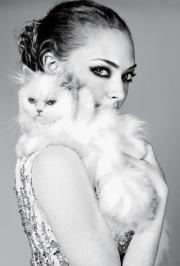Amanda Seyfried: Rrrrnhhhwwwooo!!    #seyfriend  #sexy  #cat  #b