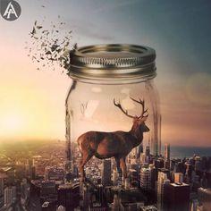 Hayvanları Yaptığı Rötuşlarla İlginç Hallere Sokan Sanatçıdan 20+ Çalışma Sanatlı Bi Blog 16
