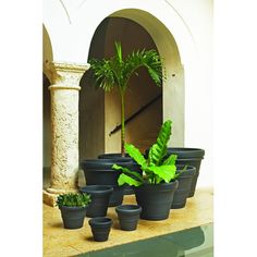 Big outdoor planters and flower pots is what we do! Our goal is simply to offer the largest selection of garden planters, pots and container gardening products. Plastic Planters, Large Planters, Outdoor Planters, Planter Pots, Large Pots, Outdoor Gardens, Large Backyard Landscaping, Succulent Landscaping, Landscaping Tips