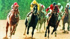 Racing's Unforgettable Rivalries: Sunday Silence and Easy Goer Derby Horse Race, Horse Racing, The Belmont Stakes, Preakness Stakes, Sport Of Kings, Thoroughbred Horse, Racehorse, Horse Farms, Kentucky Derby