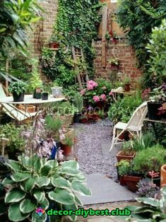 From my board small back gardens: Pic: paved garden / Magic Garden Small courtyard garden with seating area design and layout 38 - Rockindeco Urban garden, London - use old ladder as trellis for tomatoes & peas Urban gardening using an old ladder for a tr