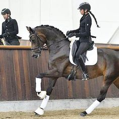 To a horse person Dressage is what feelings look like. We ❤️ dressage. #dressage#dressagerider#dressagegirl#horse#horses#horselove #dressageperformance