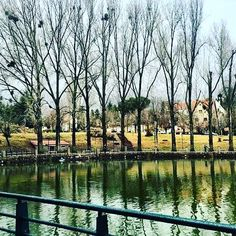 The beautiful Ifrane, we like to visit it in summer too, the most perfect weather all over Morocco. #ifrane #nature #morocco #yougomorocco #nature #mountains #mountainclimbing #lovemorocco #tourists #tourism #sahara #people #roadtrip #camping #moroccan #travel #tour #desert #adventure #different #moroccocuisine #souq #cuisine #waterfalls #destination #safari #sightseeing