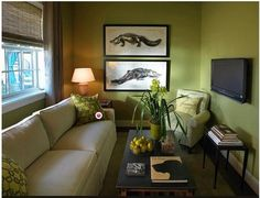 Best Tiny House Living Room Ideas For Cozy Small Living Room Color Palette Living Room, Living Room Colors, Living Room Green, Living Room Diy, Living Room Designs, Apartment Living Room, Living Room Paint, Tiny House Living Room, Room Design