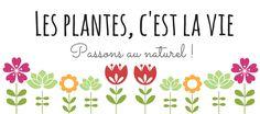 Des reflets acajou, rouges, violines avec le henné naturel & autres plantes