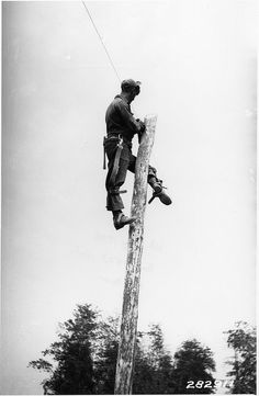 Climb a telephone pole with the lineman belt and climbing spikes!