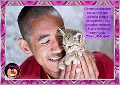 ♥ Violeta Violett ♥: Leyenda budista sobre los gatos