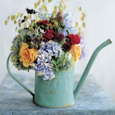 country garden in a watering can
