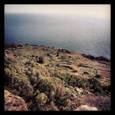 Dingli and its cliffs are a great option for trekking and abseiling be it spring, summer, autumn or winter, which is typically very mild in the Mediterranean, Malta especially. (at Had-Dingli)  #malta #travel #rtw #traveltheworld #ttot #travelporn #backpacker #backpacking #wanderlust #vagabond #hostel #hostels #hostellife #hostelling #photooftheday #instadaily #igdaily #instagramers #friends #newfriends #fun #MyTravelGram #picoftheday #instatravel #instagood #instatrips #trekking #cloudporn…
