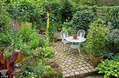 Patio Designs on a Budget Small courtyard gardens, Cottage garden design, Small gardens 12 Surprising Tips: Create Your Dream Garden on a L. Small Courtyard Gardens, Small Courtyards, Back Gardens, Small Gardens, Garden Ideas For Courtyards, Garden Ideas For Large Gardens, Tiny Garden Ideas Patio, Small Garden Planting Ideas, Garden Beds