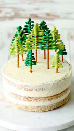 Gingerbread Christmas Cake Moist gingerbread vanilla cake covered in fluffy coconut buttercream frosting and chocolate pretzel trees on top. Christmas Cake Moist gingerbread vanilla cake covered in fluffy coconut buttercream frosting and chocolate pretzel Christmas Sweets, Christmas Cooking, Noel Christmas, Christmas Tree Cake, Christmas Birthday Cake, Modern Christmas, Camping Birthday Cake, Fall Birthday Cakes, Camping Cakes