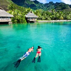 Romantic Tahiti Honeymoon With Bora Bora Best Vacations For Couples, Best All Inclusive Honeymoon, Honeymoon Spots, Couples Vacation, Best Vacation Spots, Honeymoon Destinations, Honeymoon Ideas, Caribbean Honeymoon, Disney Honeymoon