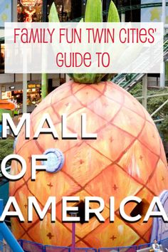 Mall of America family guide, Mall of America, Mall of America Minnesota, Mall of America with Kids, Things to do at Mall of America, mall of america amusement park, Mall of America Bucket Lists, Mall of America Shopping