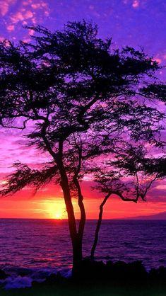 Sunset, Maui, Hawaii.