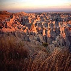 Many of Cal U's students studying earth sciences are spending their summers working in national and state park systems. This summer students are completing their internships with Ocala National Forest in Ocala, Fla. and the Badlands National Park in Interior, S.D.