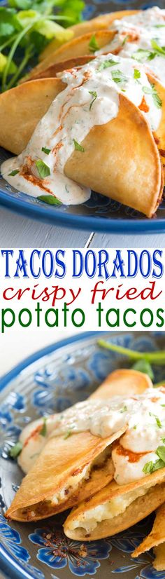 Tacos Dorados de Papa recipe these fried potato tacos were sooo crispy! and e Tacos Dorados de Papa recipe these fried potato tacos were sooo crispy! and easy with mashed potatoes! Good for my vegan vegetarian friends too! Source by fernandafdcg Mexican Dishes, Mexican Food Recipes, Vegetarian Recipes, Cooking Recipes, Vegan Vegetarian, Healthy Recipes, Papa Recipe, Potato Tacos, Food Porn