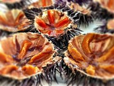 Fresh sea urchins Ag. Giannis taverna #myconos #greece #blueoliveoil #extravirgin #oliveoil photo by @locccations www.blueoliveoil.com