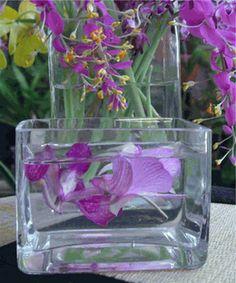 Glass Vases & Candleholders 3x4
