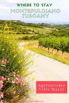 Wondering where to stay in Tuscany, Italy? A farmstay - or agriturismo - is a popular option. If you plan on exploring the picturesque southern Val d'Orcia and want to find an authentic Tuscan agriturismo, Montepulciano has many to choose from. Villa Mazzi is truly home away from home!   Italy trip, Italy Travel, Italy vacation, Where to stay in Tuscany, Tuscany travel #italyvacation