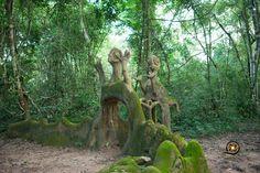 osun osogbo sacred grove - Google Search