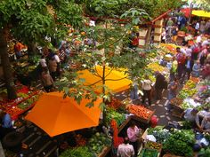 Funchal fruit market by fuzzygrain, via Flickr, Madeira Island, Portugal