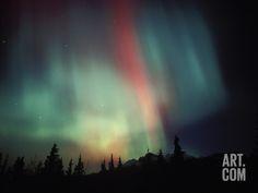 Aurora Borealis, Alaska, USA Photographic Print by Tom Walker at Art.com