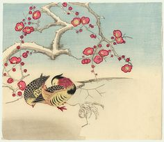 Original Meiji era Japanese Woodblock Print Mandarin Ducks and Blossoming Plum