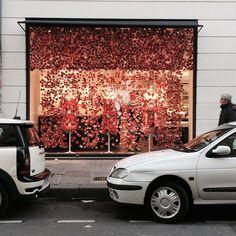 #分享Instagram# Colette 'Mad Flower Window ' @colette