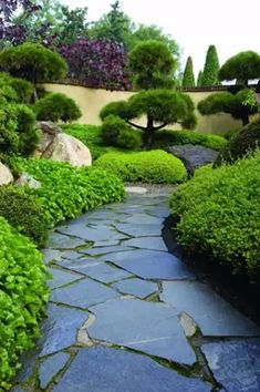 60 Fresh Backyard Landscaping Design Ideas on a Budget – Landscape design - New ideas Diy Garden, Garden Soil, Walkway Garden, Paver Walkway, Front Walkway, Garden Floor, Bonsai Garden, Home And Garden, Japanese Garden Design
