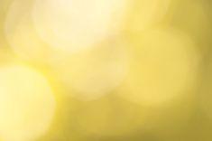 Yellow Bokeh Nature Sunny Nature Background stock photo