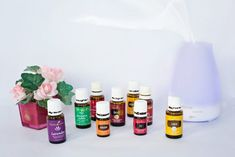 Want to learn more about essential oils ? Check out these articles: 16 Essential Oils for Pain Relief Healing Properties of Oregano Oil for. Essential Oil Diffuser Benefits, Best Essential Oils, Young Living Essential Oils, Essential Oil Blends, Essential Oils For Tinnitus, Doterra Diffuser, Doterra Oils, Oregano Oil Benefits, Oils For Scars