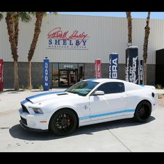 The best of the best is a Shelby mustang.