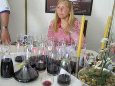 Judging Panel at the prestigious Pamplona San Fermin Wine Tasting! Pamplona, Wine Tasting, Wine Recipes, San